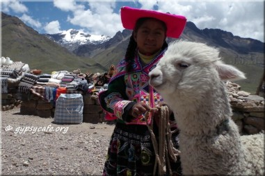 Peruvian Girl with Alpaca – en route from Chivay to Puno