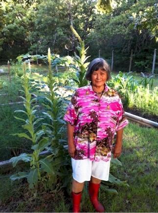 minisa-gardening
