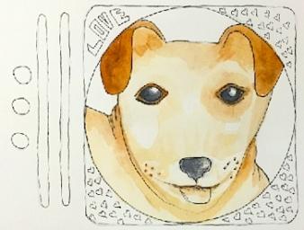 13 Dog/OC